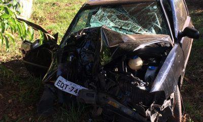 Motorista perde controle de carro em trevo de rodovia e bate em árvore — Foto: João Trentini/Arquivo pessoal