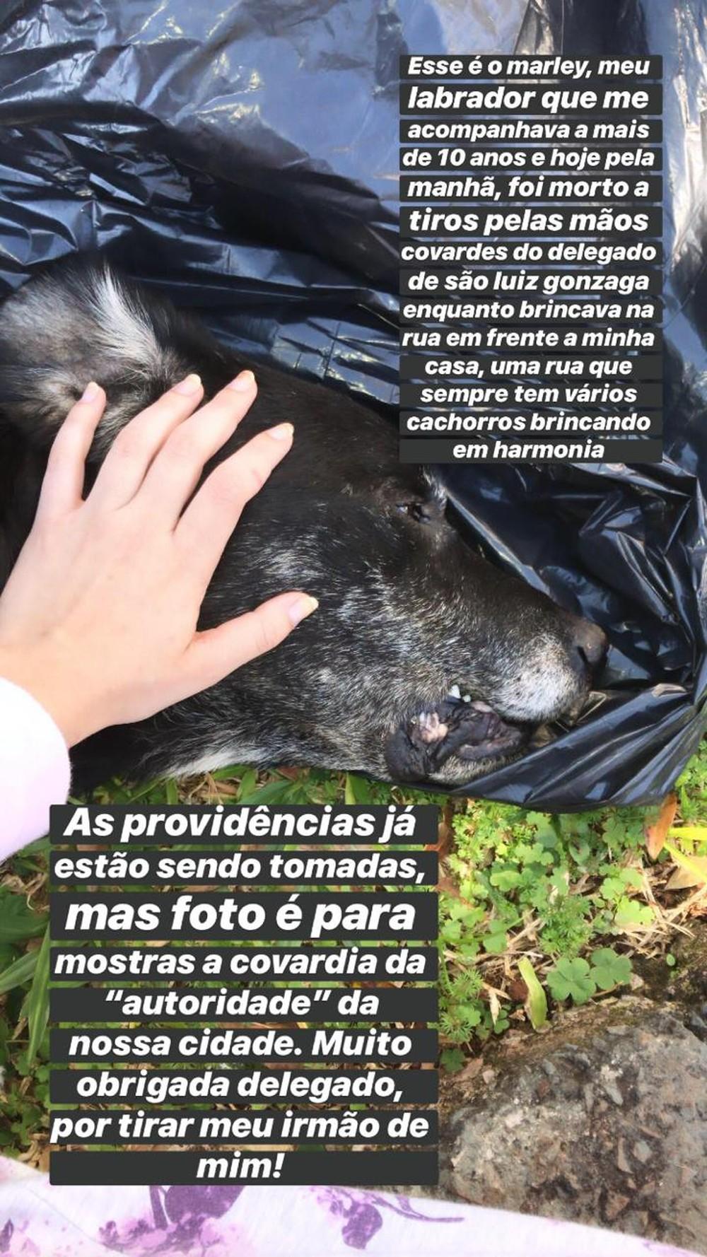 Katyusse, dona do Marley, fez uma postagem com desabafo após a morte do cão — Foto: Katyusse Gabert/Arquivo pessoal