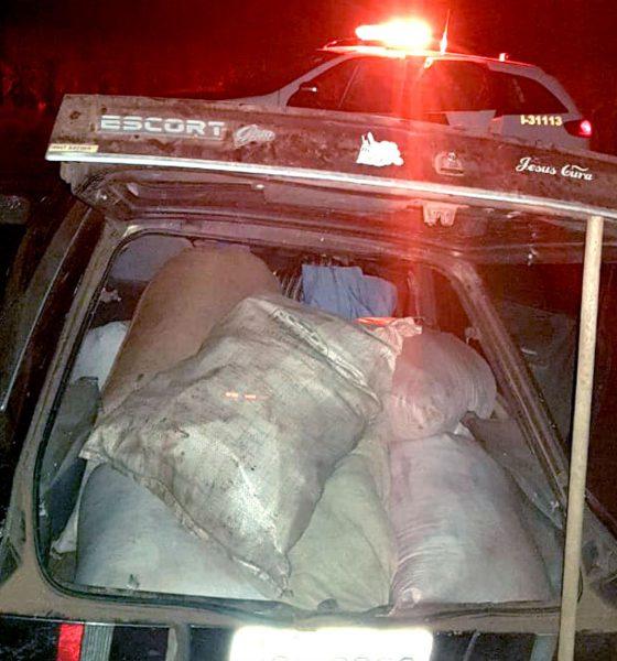 Produtos agrícolas furtados estavam no carro que foi abordado em estrada rural de Ribeirão do Sul — Foto: Polícia Militar/Divulgação