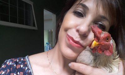 Cabeleireira adota galo em Sorocaba — Foto: Arquivo pessoal