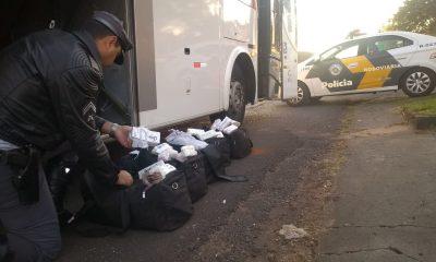 Grande quantidade de anabolizantes foi apreendida (Foto: Divulgação)