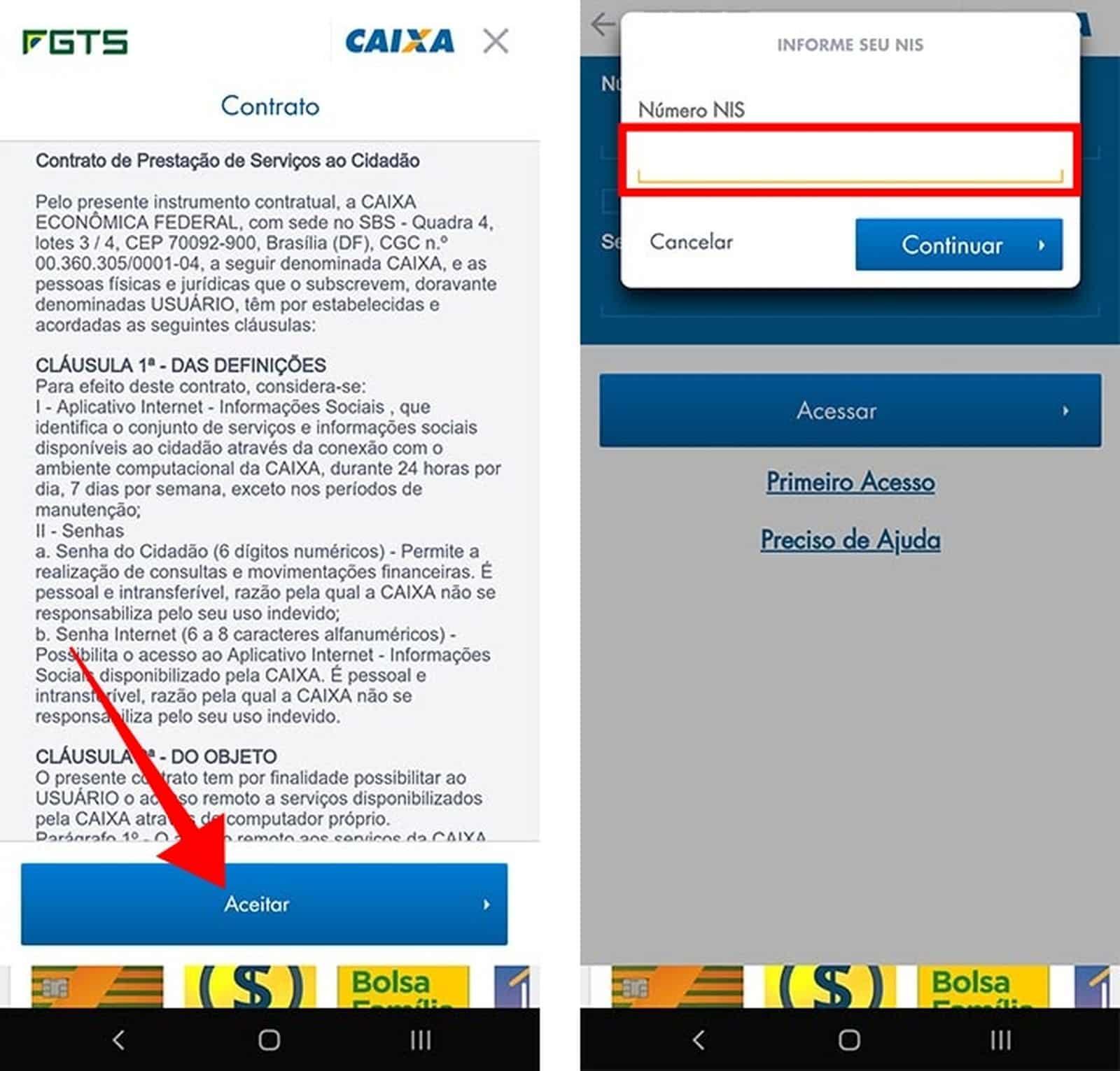 Insira o número do NIS para começar o cadastro no FGTS 2019 — Foto: Reprodução/Paulo Alves