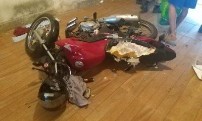 Cachorro destruiu parte de moto da família — Foto: Polícia Militar do DF/Divulgação