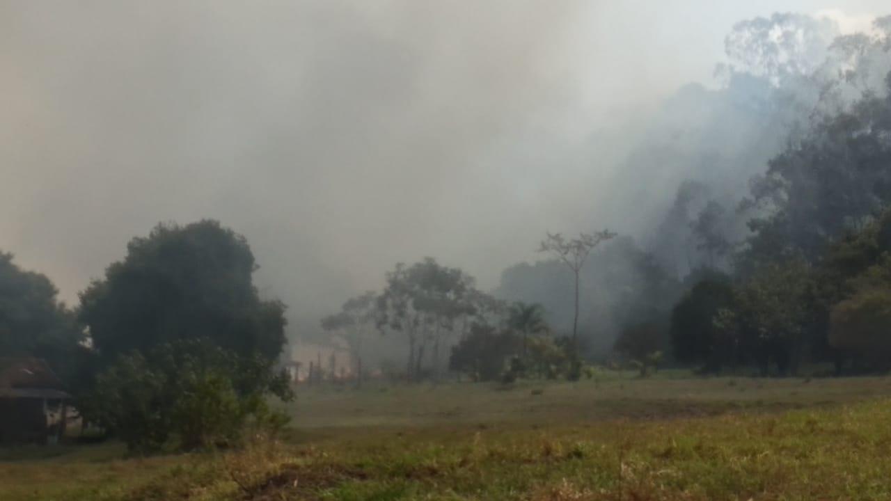 Incêndio atinge mata próxima a Usina de Reciclagem em Assis (Foto: AssisNews/Marcos Diniz)