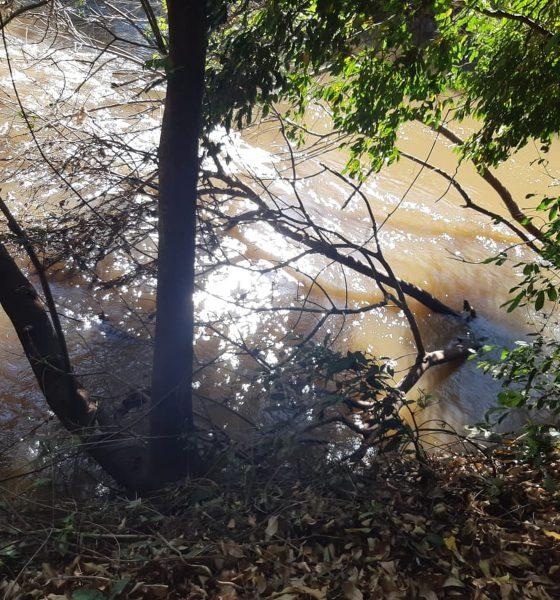 Pescador morre após cair de barranco no rio Capivara em Maracaí (SP) — Foto: Corpo de Bombeiros/Divulgação