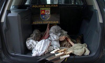 Homens foram presos por furto de gado em Presidente Prudente — Foto: Reprodução/TV Fronteira