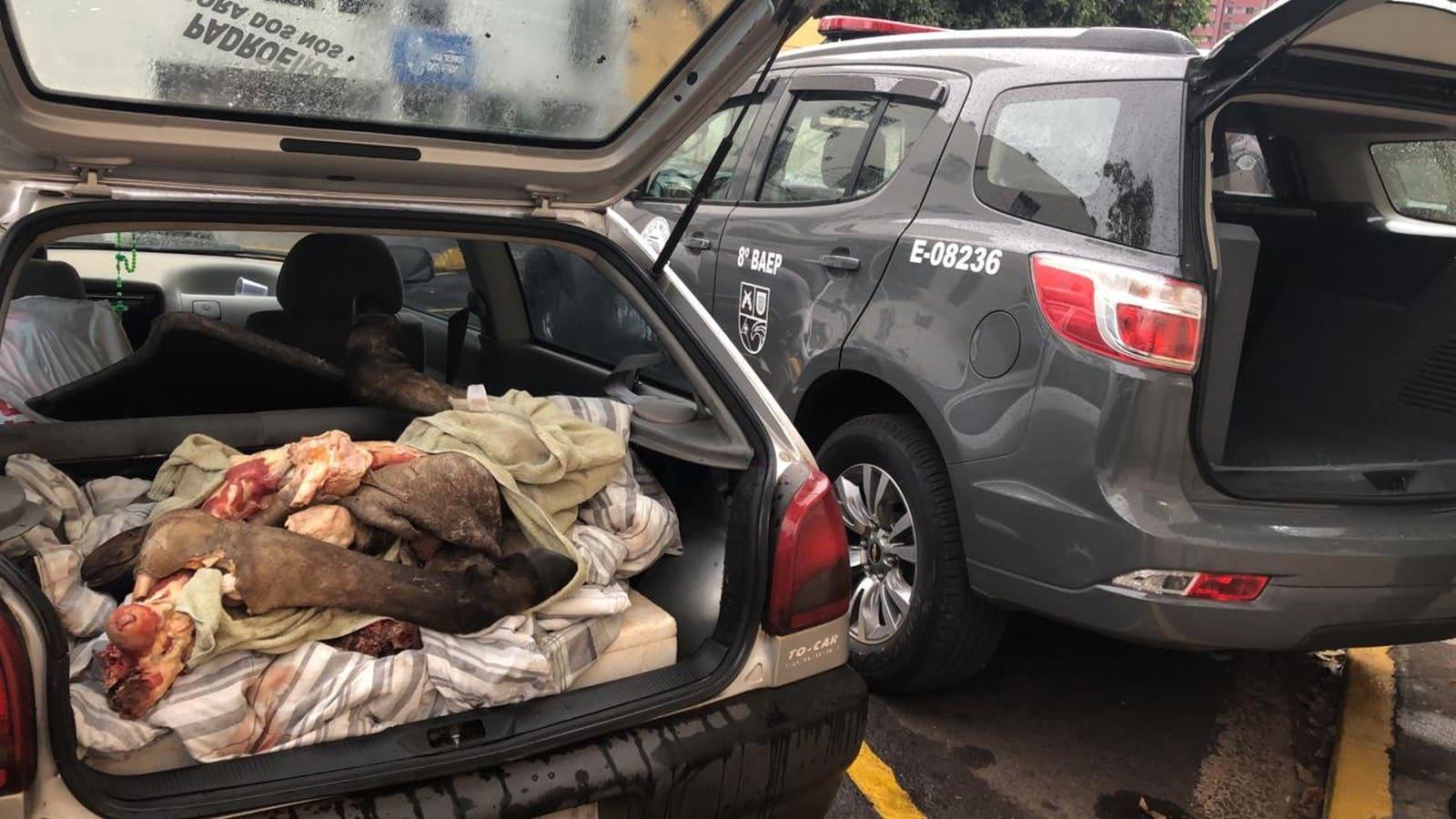 Homens foram presos por furto de gado em Presidente Prudente — Foto: David de Tarso/TV Fronteira