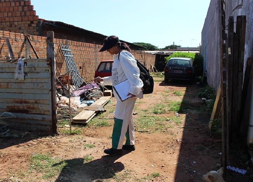 Assis registra 9 casos de Dengue neste ano e Prefeitura pede colaboração da população (Foto: Departamento de Comunicação)