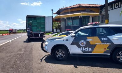 Homem é preso ao transportar cigarros contrabandeados e falsificar nota fiscal em Ourinhos — Foto: Divulgação/Polícia Rodoviária