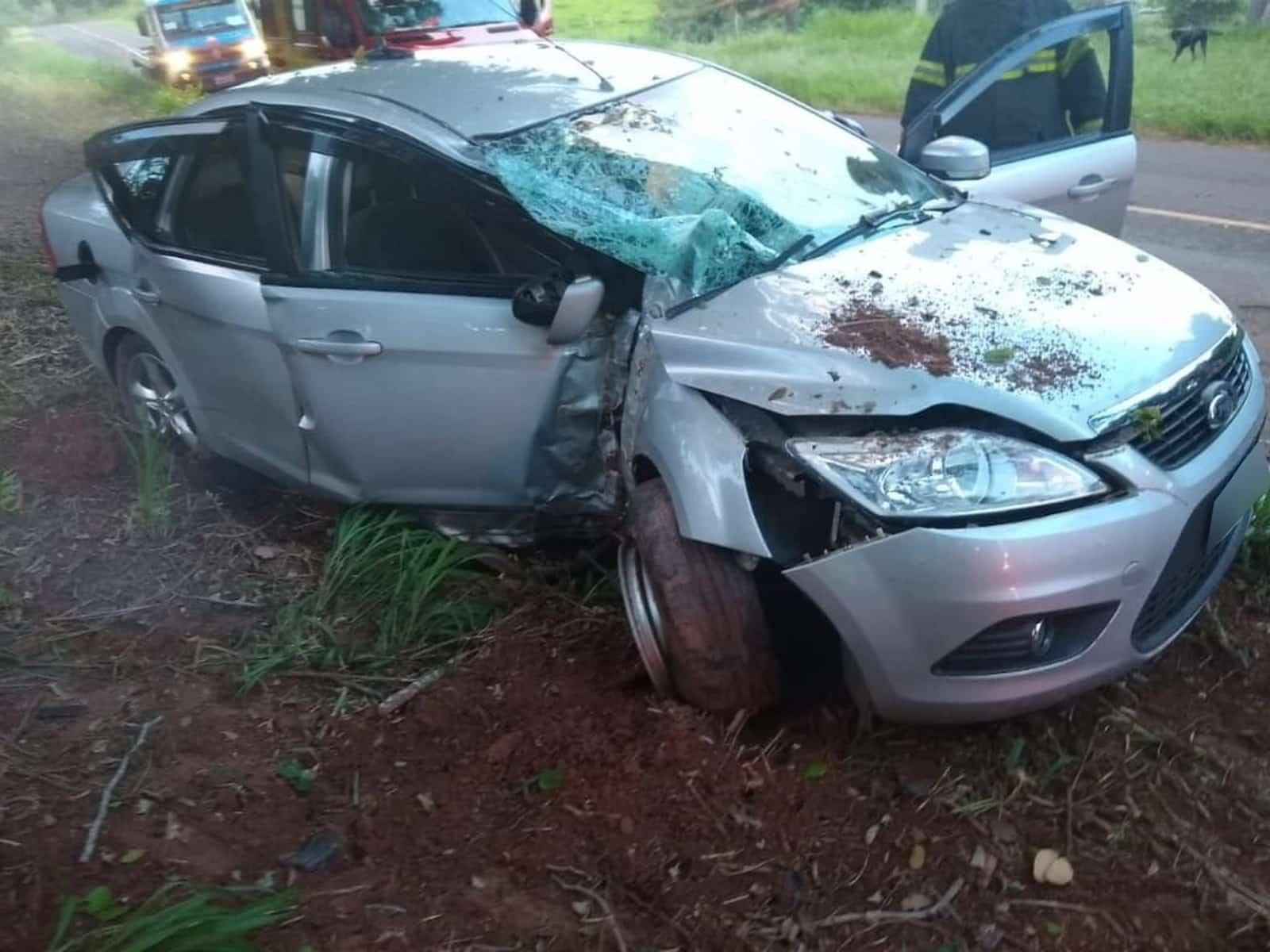 Veículo bateu em árvore, em Osvaldo Cruz — Foto: Cristiano Nascimento/Cedida