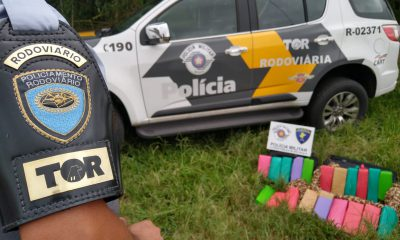 Maconha foi apreendida em ônibus — Foto: Divulgação/PM Rodoviária