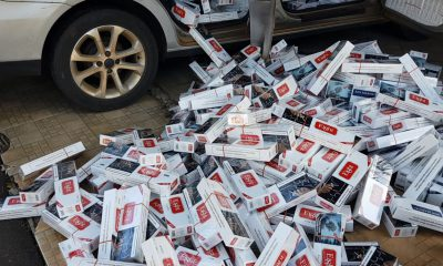 Cigarros serão levados para a delegacia da Polícia Federal de Marília após contagem dos produtos — Foto: Alcyr Netto/TV TEM