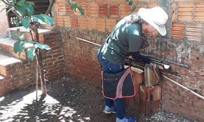 Secretaria da Saúde confirma quatro casos de dengue em Cândido Mota