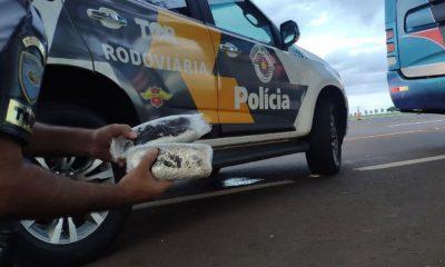 Tabletes de cocaína foram apreendidos em Palmital — Foto: Divulgação/ PM Rodoviária
