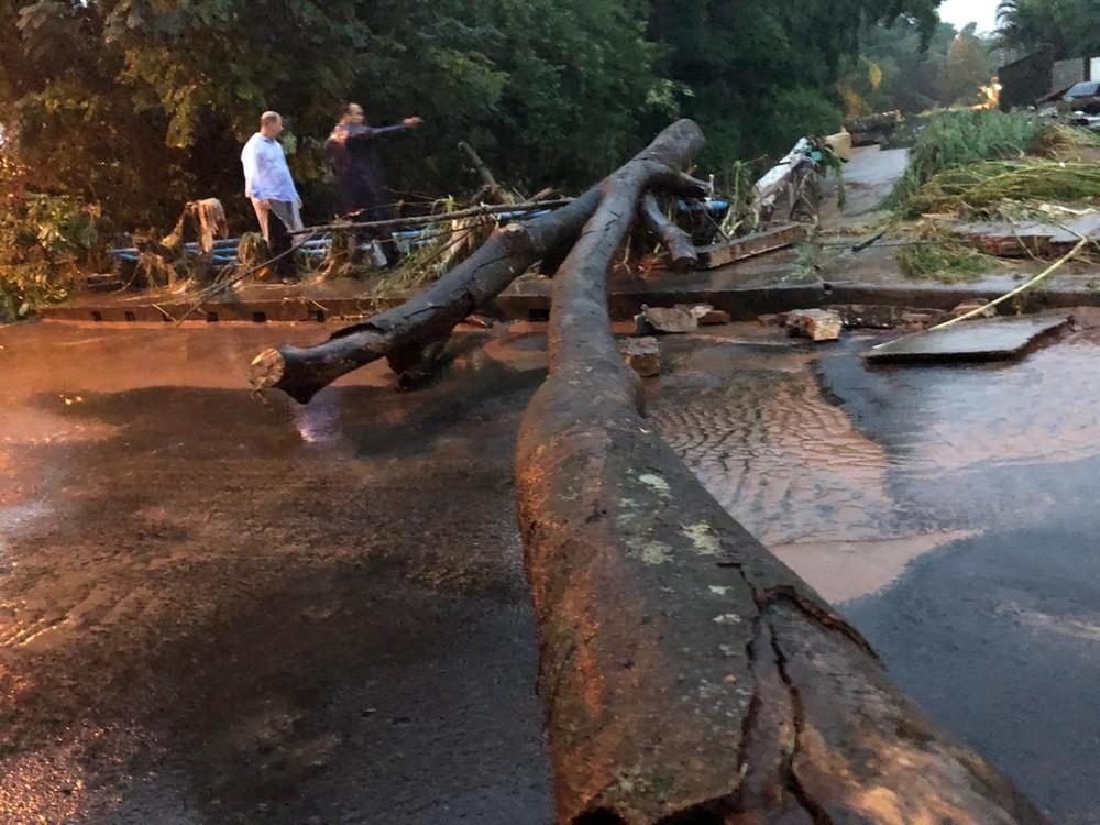 Árvores também tombaram com a força da correnteza em Botucatu — Foto: Prefeitura de Botucatu/Divulgação