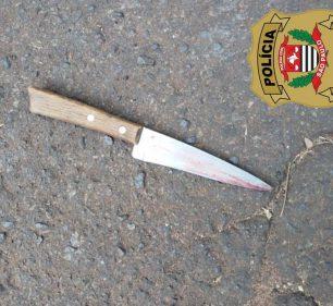 Faca usada no crime foi apreendida pela polícia — Foto: Polícia Civil