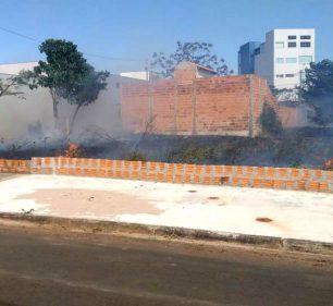 Terreno em Assis, cujo proprietário foi autuado pela prática de queimada (Foto: Departamento de Comunicação)