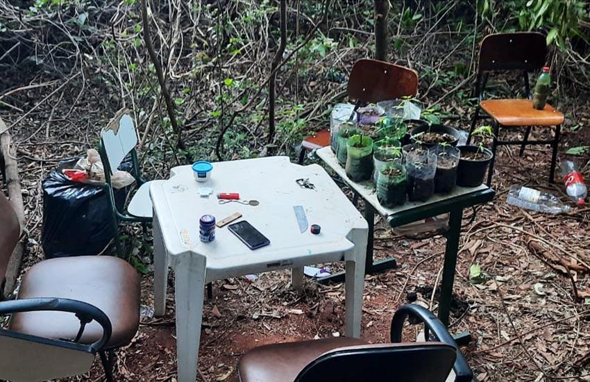 Local onde os adolescentes usavam para plantar maconha