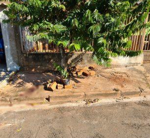 Vizinhos relataram que os irmãos brigaram na calçada da casa deles na noite deste sábado (19) — Foto: Polícia Militar