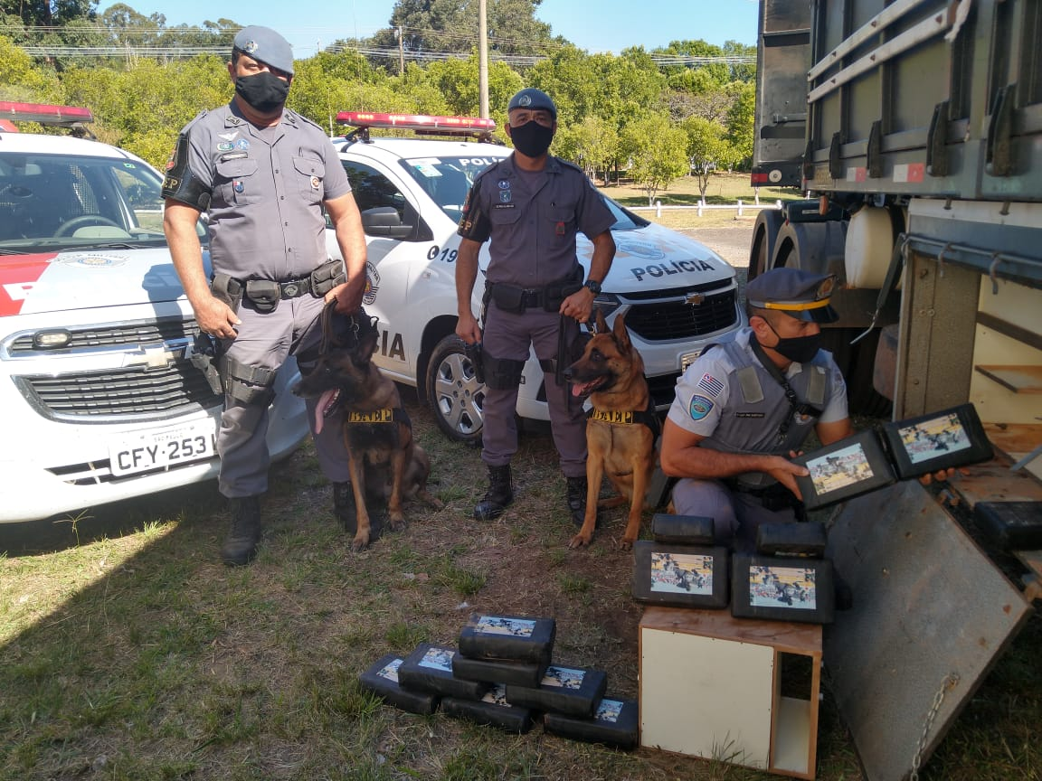 Polícia aborda caminhão com 33 tabletes de cocaína em Cândido Mota (Foto: Polícia Militar Rodoviário/Divulgação)