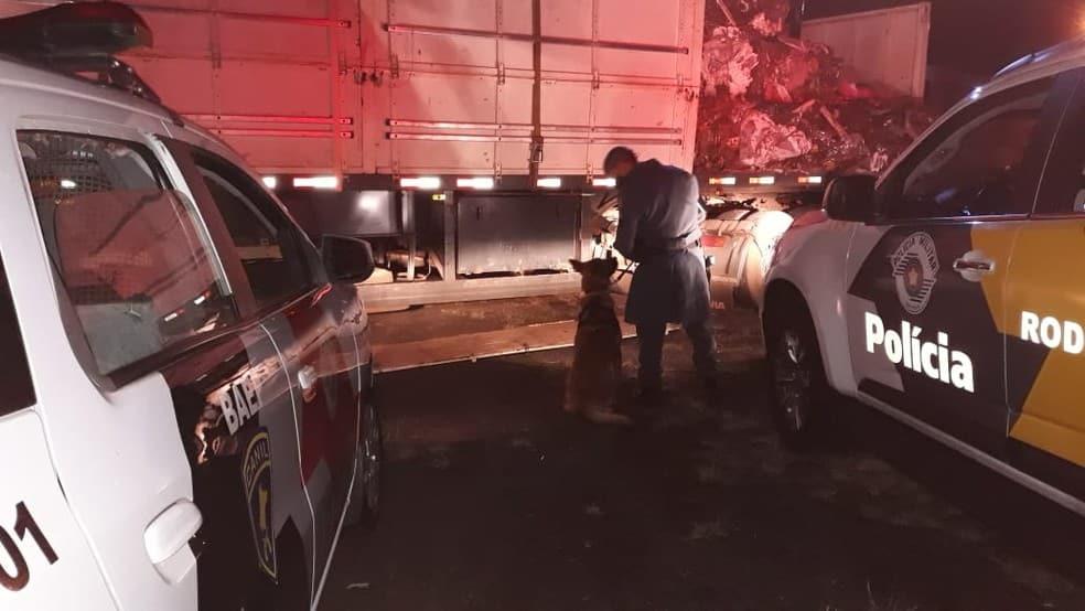 Abordagem do caminhão foi feita na Rodovia Raposo Tavares em Assis (Foto: Polícia Rodoviária/Divulgação)