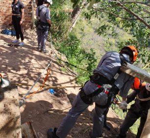 Operação foi feita no início da tarde deste domingo (30) em Marília — Foto: Leonardo Moreno/Marília Notícia