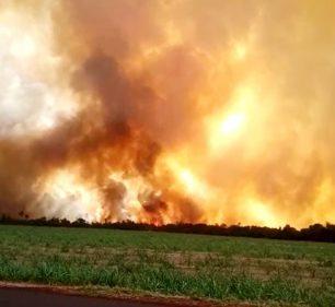 Por se tratar de uma área particular, bombeiros não foram acionados e combate é feito por equipes de usinas da região — Foto: Arquivo pessoal