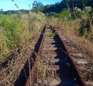 Prefeitura registra boletim de ocorrência por furto de dormentes e trilhos de trem próximo à Assis (Foto: Departamento de Comunicação)