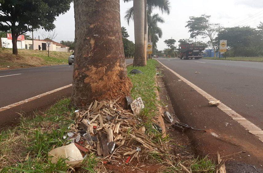 Destroços e a placa do carro ficaram ao lado do coqueiro no trecho urbano da Rodovia Raposo Tavares — Foto: Adolfo Lima/TV TEM