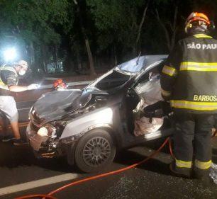 Carro atropelou e matou um cavalo que estava na rodovia em Tupã — Foto: Arquivo pessoal