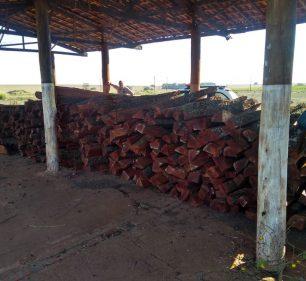 Em Cândido Mota, toras de madeira foram encontradas sem certificação de origem — Foto: Polícia Ambiental / Divulgação